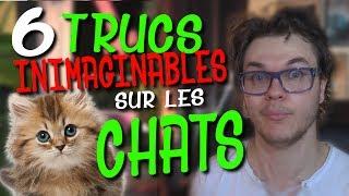 Video CHRIS : 6 Trucs Inimaginables Sur Les Chats MP3, 3GP, MP4, WEBM, AVI, FLV September 2017