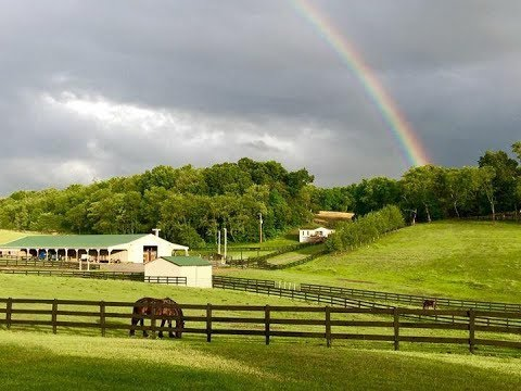 36 Acre Gentleman's Horse Farm