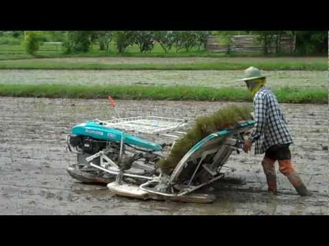 Planting Rice By Machine