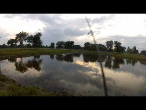 evobowhunter: Pond fishing