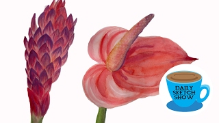 Tropical Flowers Studies