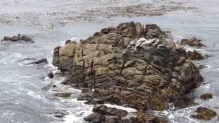 2013_07_13_P28C: Thắng Cảnh Và Sóng Biển Tại Pebble Beach