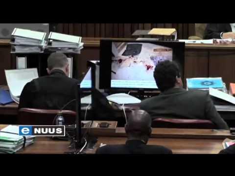 Forensiese deskundige verdedig sy bevindings / Forensic expert defends his findings