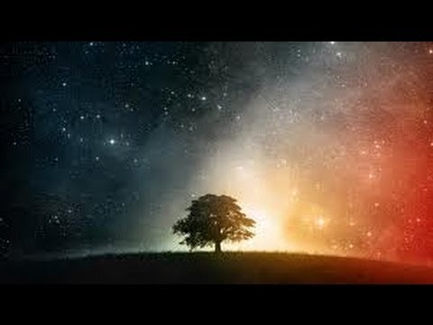 Haramein - DNA Fingerprint of God unseen forces science physics mysteries solved revealed mind over matter spirit world sound light universe history truth earth mysteri...