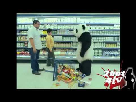 Panda Bully 2hot4tv