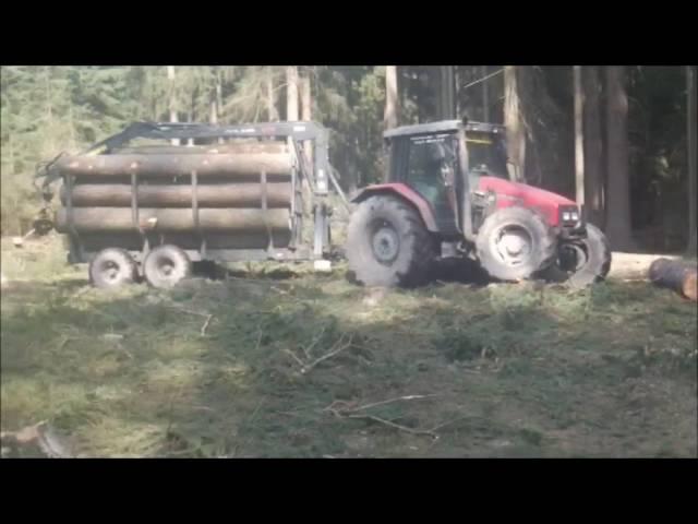 Imagefilm Gerhard Dangl   Mp3FordFiesta.com