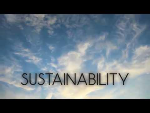 Definition of Sustainability – Automotive Plastics and Crumple Zones