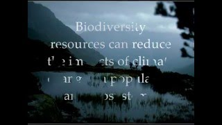 Brief introduction to the Convention on Biological Diversity held in Rio de Janeiro.