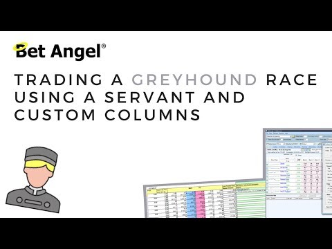 Trading A Greyhound Race Using A Servant & Custom Columns
