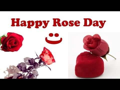 Special Rose Day Video - 2015