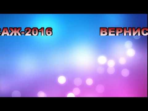 Горняцкий вернисаж 2016 (вторая группа) (видео)