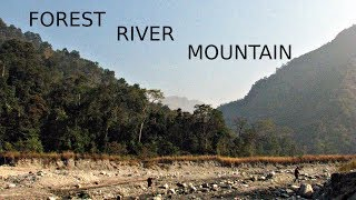 Dooars India  city photo : Offbeat Forest River Mountain Confluence - Dooars - Beautiful Colors of West Bengal Incredible India