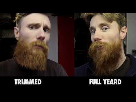 YEARD FINALE | HOW to Trim a HUGE BEARD by Yourself | DIY BEARD GROOMING & STYLING