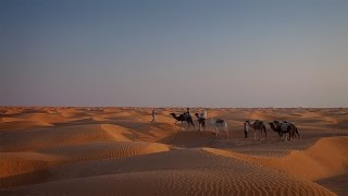 Douz Tunisia  city photos : Sahara desert: from Douz to Ksar Ghilane - True Tunisia / season 1 (episode 5)