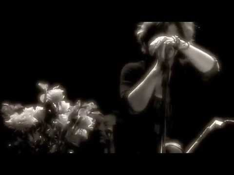 Cowboy Junkies – Video Tour Diary April 2010