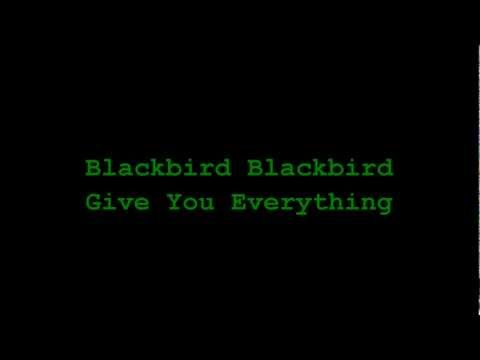 Give You Everything (Song) by Blackbird Blackbird