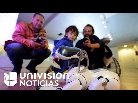 Video Los juguetes tecnológicos más deseados por los niños y adultos en esta Navidad download in MP3, 3GP, MP4, WEBM, AVI, FLV January 2017