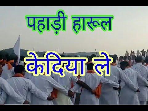 Video खूबसूरत जौनसारी हारूल डांस ...केदिया ले।।  jaunsari harul in pajitilani download in MP3, 3GP, MP4, WEBM, AVI, FLV January 2017