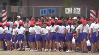 羽黒小H28運動会3・綱引きから選抜リレー