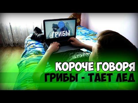 korotkie-houm-video