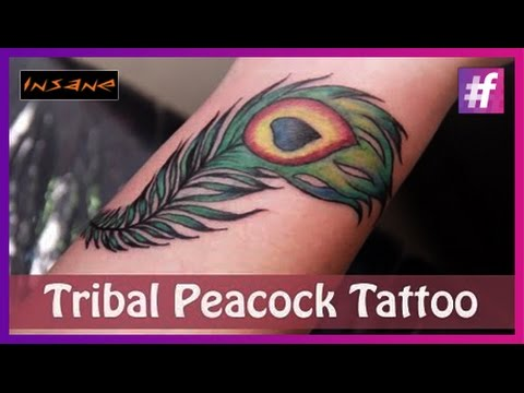 Coloring and Shading Of Feather Tattoo |  Symbolic Peacock Feather Tribal Tattoo