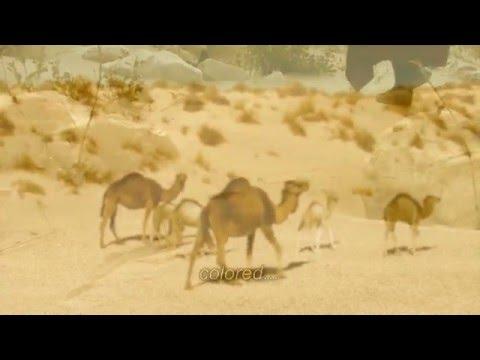 'Sahara mon aimé désert'  - Pensées Orient-Occident Poème de Nicole Coppey