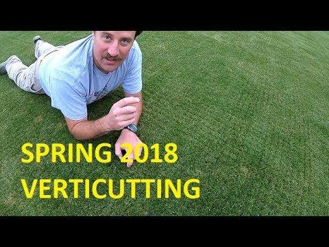 Spring 2018 Verticutting