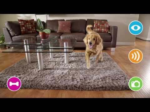 Petzi Treat Cam  - WiFi Pet Camera & Treat Dispenser