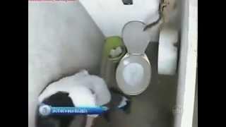 Cười chảy máu mũi với trò chơi khăm trong WC