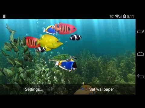 Video of Aquarium Free Live Wallpaper
