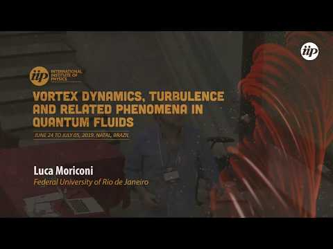 Toy Model for Vortex Ring-Assisted Particle Drag in Superfluid Counterflow - Luca Moriconi