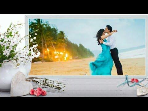 Happiness quotes - Happy Valentine's Day l WhatsApp l Wishes l Message l Quotes l SMS l Video l Image l status l