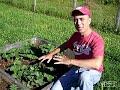 Organic Veggie garden Results!