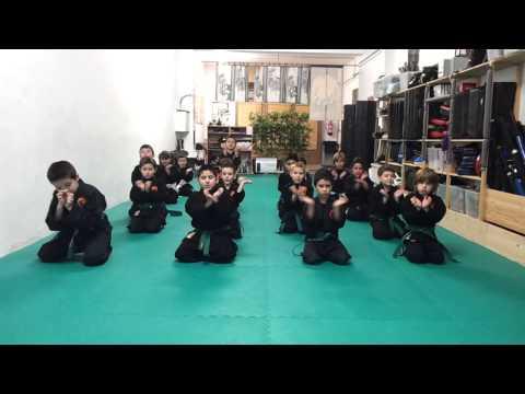 Artes marciales Infantil endurecimiento de manos Ninpo Ninjutsu Genbukan Shinboku Dojo