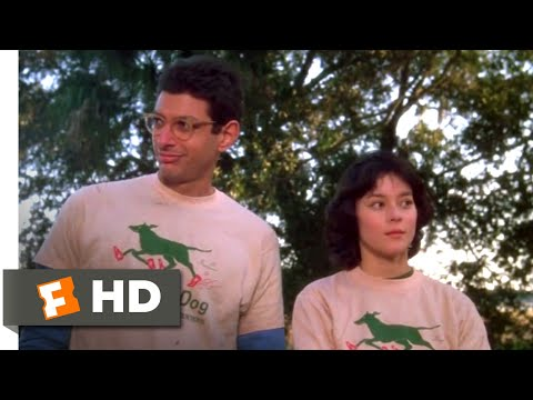 The Big Chill (1983) - The Car Jump Scene (8/10) | Movieclips