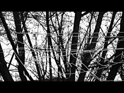 ALTERNATIVE 4 - Lifeline