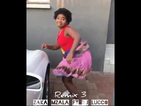Best Xitsonga Video_Zaka Mzala ft Dj Lucco_Remix 3