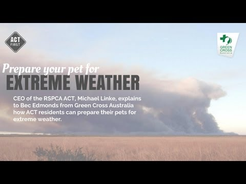 Prepare your pet for extreme weather