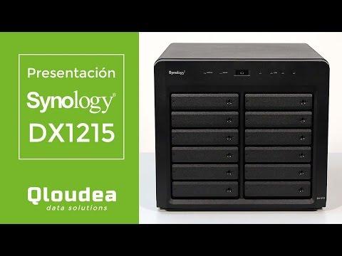 DX1215 - Unidad de expansión para 12 discos duros