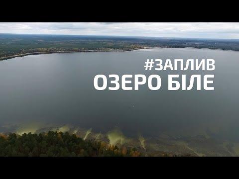 Як Курсик з Вознюком Біле озеро перепливали [ВІДЕО]