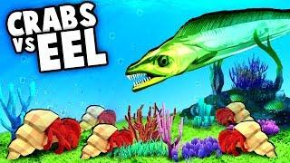 HERMIT CRABS vs GIANT EEL! Aquarium Fish Evolution! (Megaquarium Gameplay)