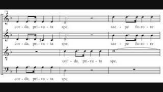Video Insanae et vanae curae - Haydn MP3, 3GP, MP4, WEBM, AVI, FLV November 2018