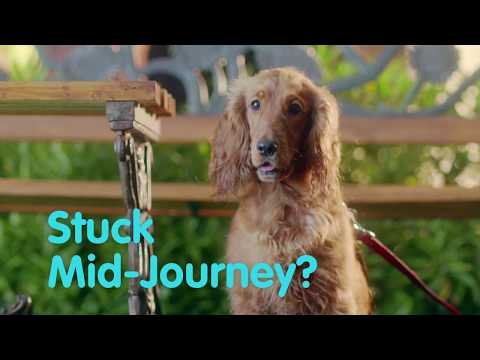 Reliance General Insurance Company Limited-The Running Dog