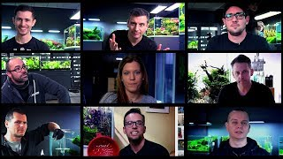Video AQUASCAPING TIPS FOR BEGINNERS IN 2019 MP3, 3GP, MP4, WEBM, AVI, FLV Agustus 2019