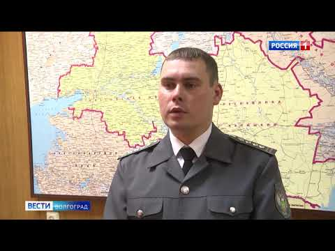В Волгоградской области Управлением Россельхознадзора осуществлен контроль уровня плодородия почвы