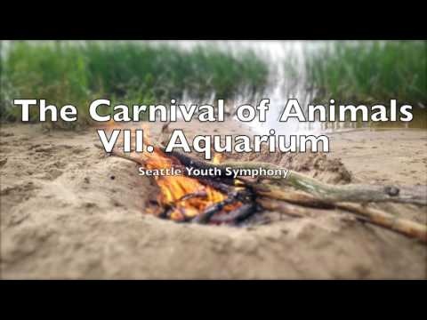 The Carnival Of Animals VII Aquarium |  Camille Saint-Saëns 1 HOUR Loop Le Carnaval Des Animaux