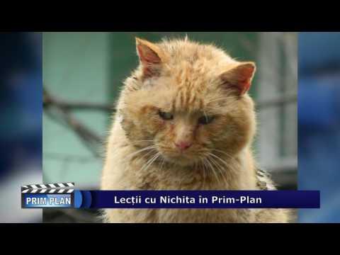 Emisiunea Prim-Plan – 9 martie 2017