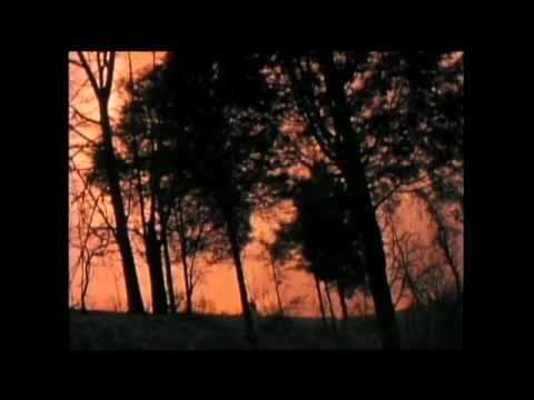 Hal Ketchum - Past The Point Of Rescue (Official Music Video)
