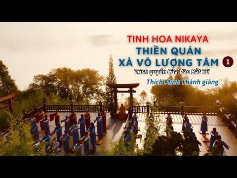 Tinh Hoa NIKAYA - Thiền Quán - Xả Vô Lượng Tâm 1 | Trích quyển Cửa Vào Bất Tử