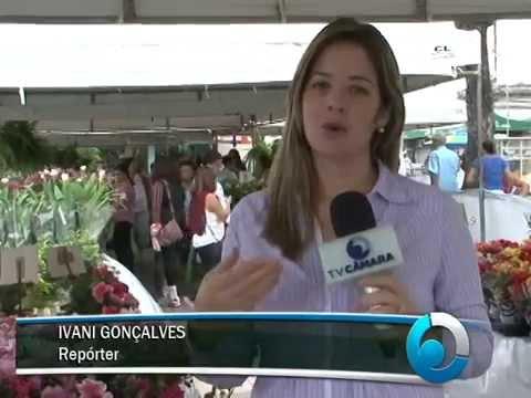 Camaçari recebe Festival de Flores Holambra